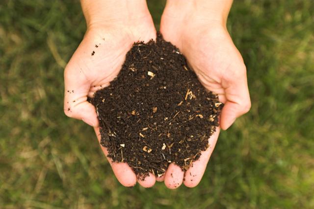 Fertilización en viticultura ecológica. Estiercol: Ventajas, tipos, dosis, aplicación…