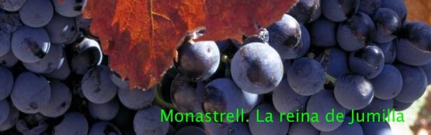 Monastrell_reina jumilla