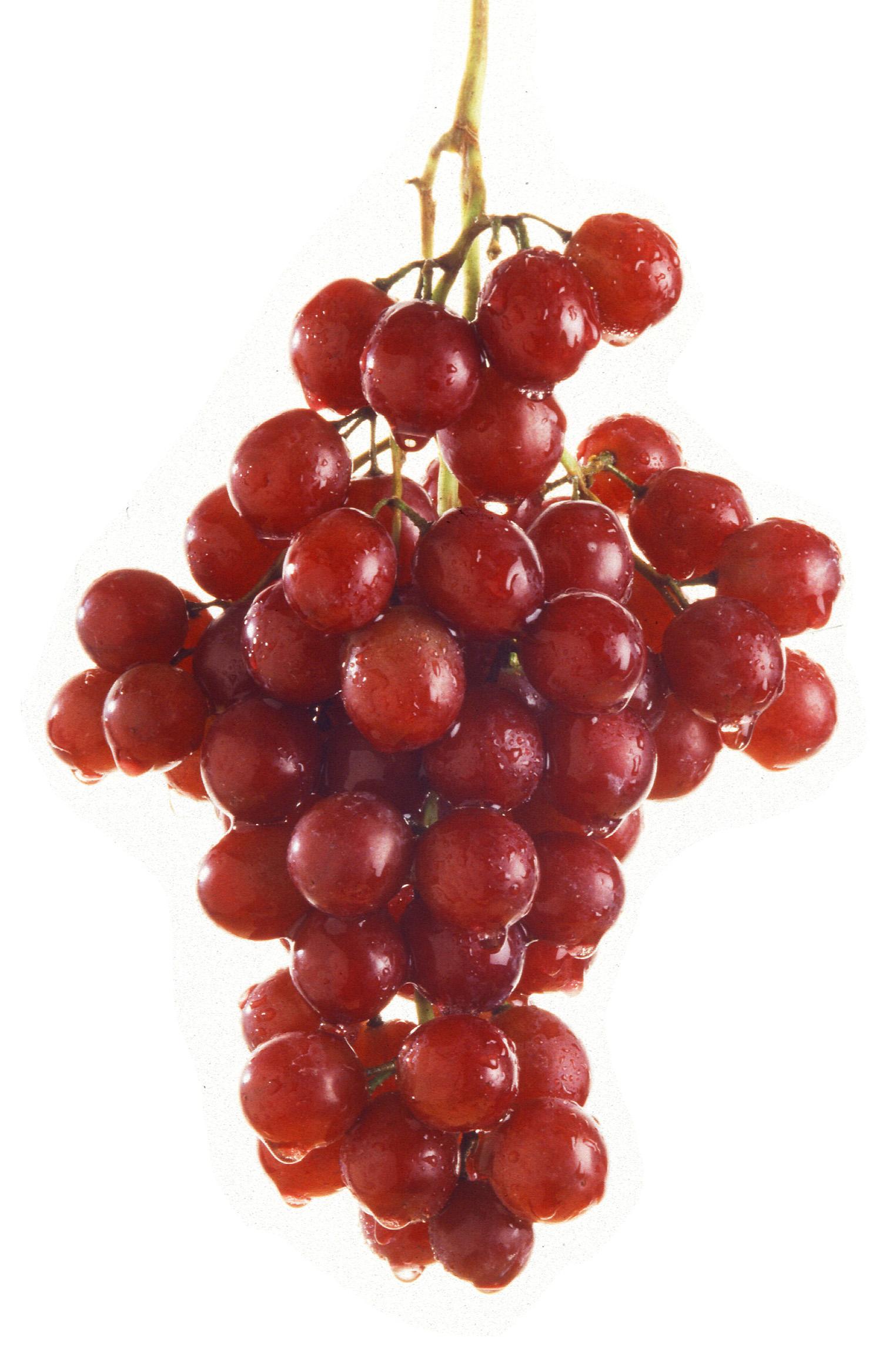 Uva sin pepitas: Flame Seedless – Características y cultivo de la uva.