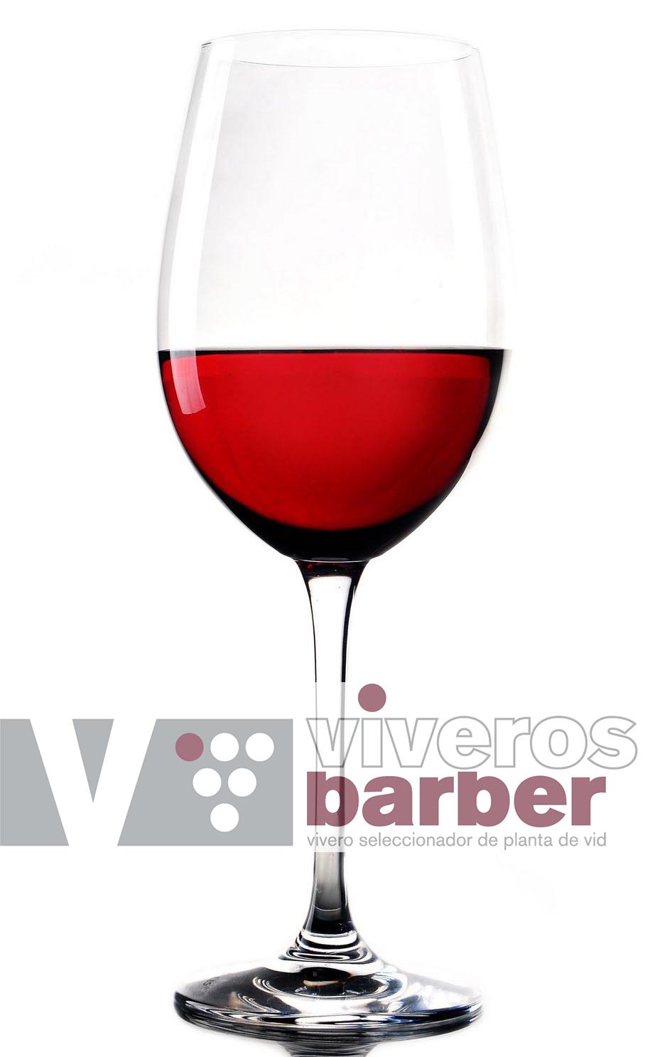 ¿Cómo hacer vino rosado? Elaboración casera paso a paso.