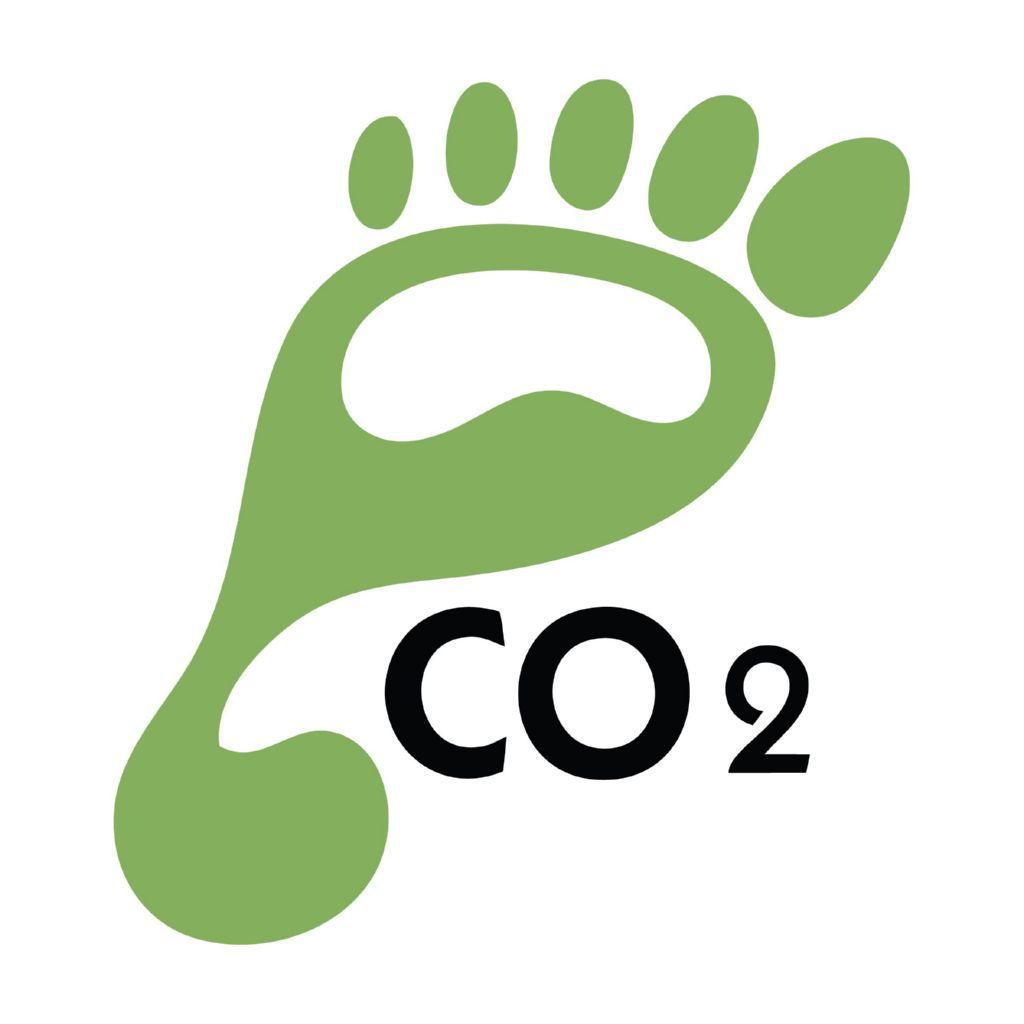 Vino y huella de carbono, ¿qué es y cómo se cuantifica en vitivinicultura?