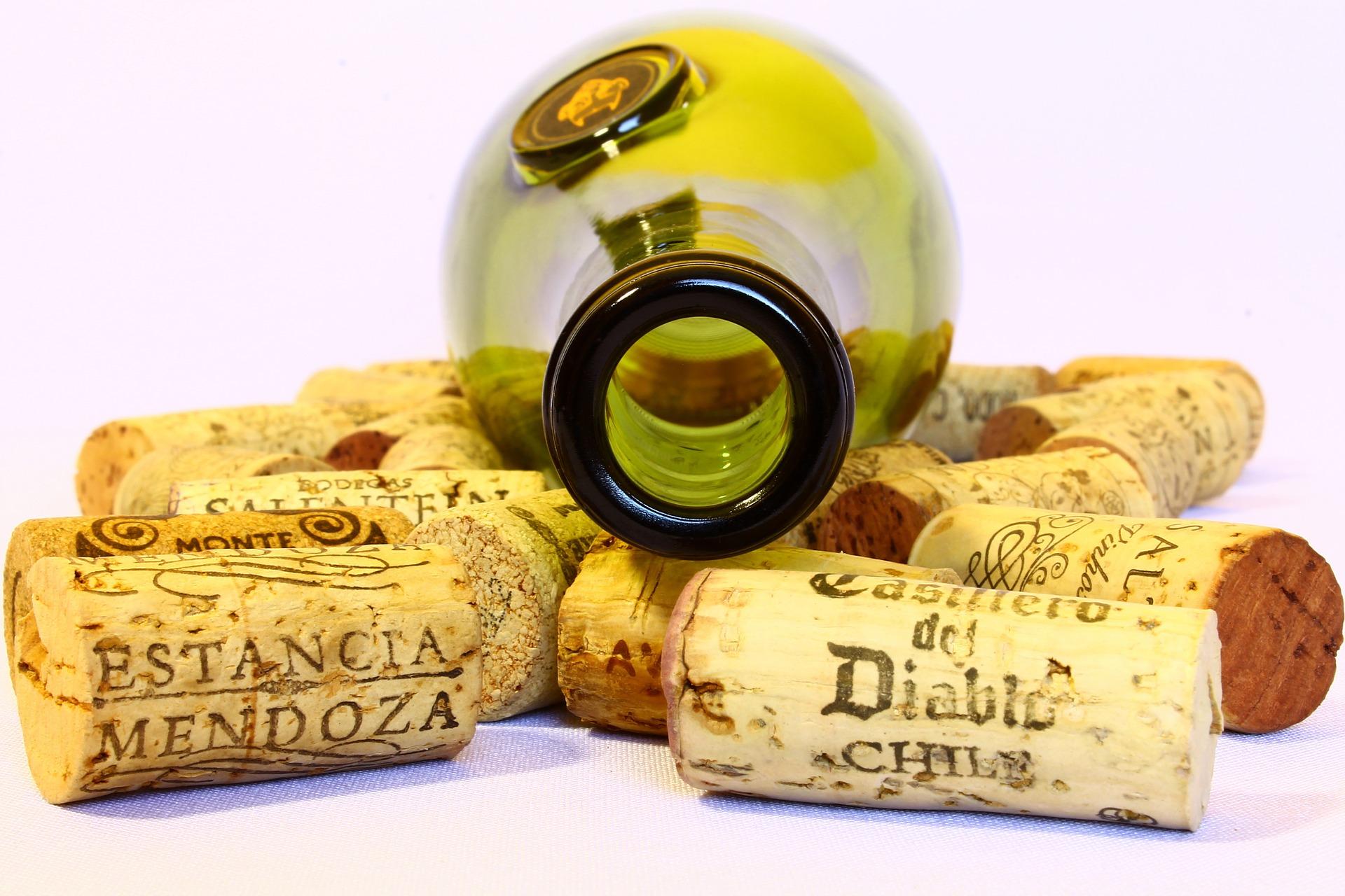"""Vino Natural. ¿Qué son y cómo se hacen los """"vinos naturales""""?"""